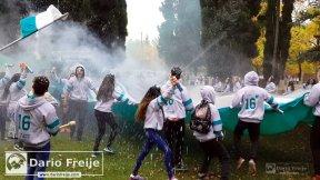 www.DarioFreije.com